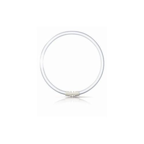 PHILIPS zářiv.kruh. TL-FC 55W/840 2GX13